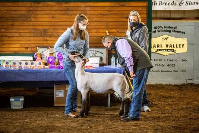 Carleigh Hindel from the Premium Ag Kids 4H group displays her market lamb for judging at the 2020 Jr Fair show on Tuesday.