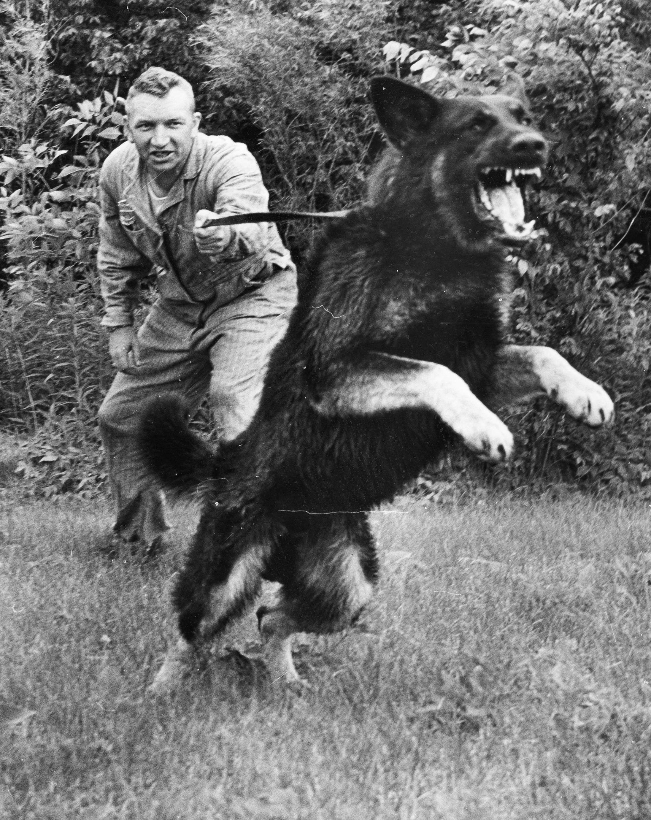 Patrolman William C. Ball with his police dog Thor.