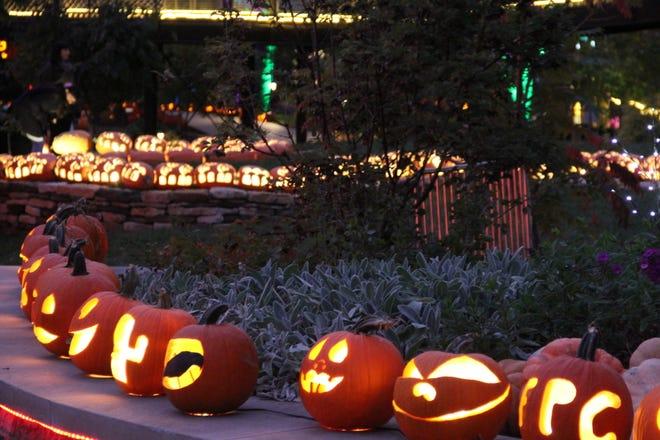 Pumpkins line the Franklin Park Conservatory & Botanical Gardens during a previous Pumpkins Aglow event.