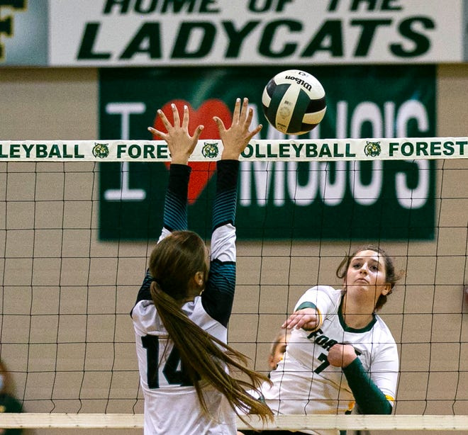 Forest's Abby Eckenroth with the hit at the net with West Port's Makenzie Fricton going up for the block. The Wildcats beat the Wolf Pack in straight sets 25-19, 25-10, 25-16.