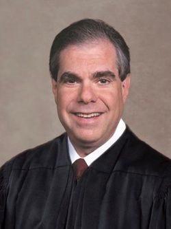 Palm Beach County Circuit Judge Jaimie Goodman.