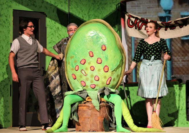 """Shop Shop People And Audrey From left, Seymour (Jake Hamilton), Mr. Mushnik (Jess Westman) and Audrey (Bailee Barrett) size up the size of Audrey II, a plant born from an eclipse that needs more than fertilizer to grow in this rehearsal scene from the Hardin-Simmons musical """"Little Shop of Horrors."""""""