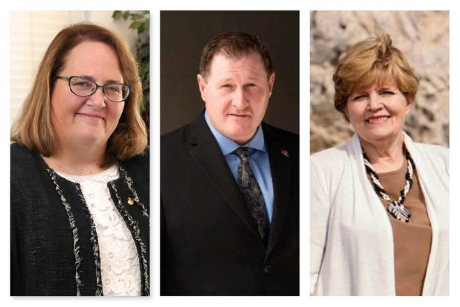 From left, Natha Anderson, Randy Hoff and Charlene Young are competing for Nevada Assembly District 30.