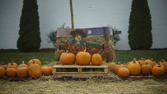 A pumpkin patch set up on State Street in downtown Black Mountain on Oct. 8, 2020.