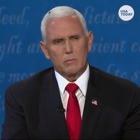 A fly stole the show resting on Vice President Pence s head at VP debate