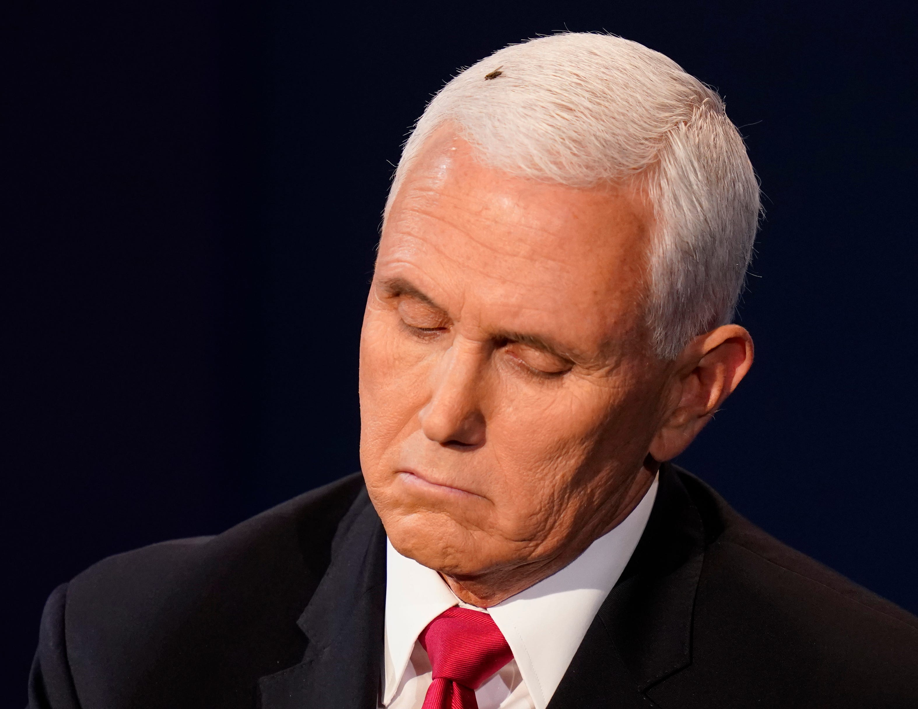 Fly lands on Mike Pence's head during debate