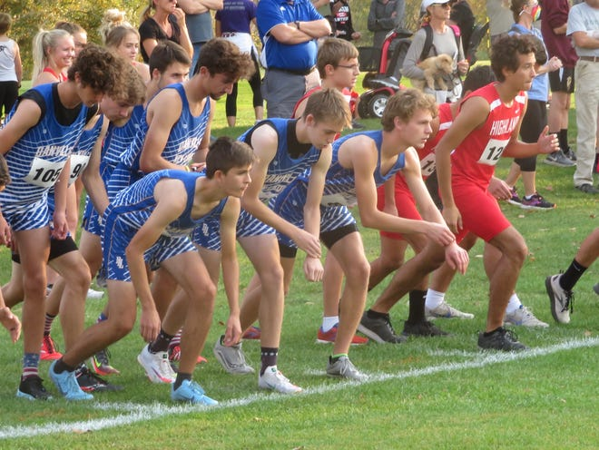 Members of the Danville-New London boys cross country team toe the line for the start of the SEI Superconference meet Thursday at Riverview Country Club in Keosauqua. The Bears won their first team title since 1995.
