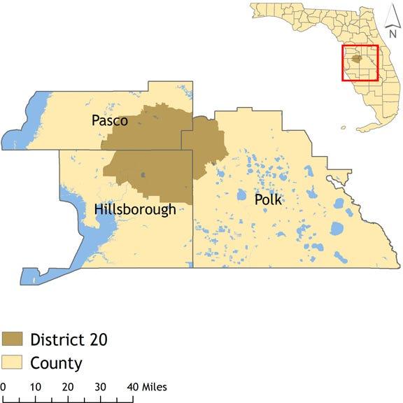 Florida Senate District 20 spans parts of Hillsborough, Pasco and Polk counties.