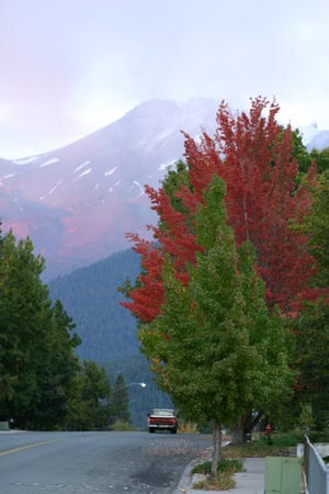 Fall colors on Lake Street in Mount Shasta in the fall of 2004.