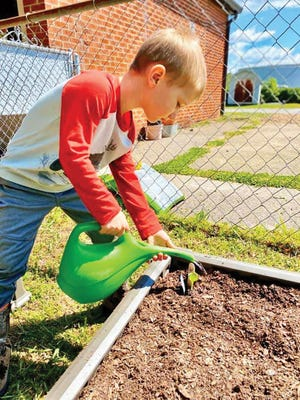 A child enrolled in the Emory Valley Early Learning Center nurtures plants in the Sensory Garden.
