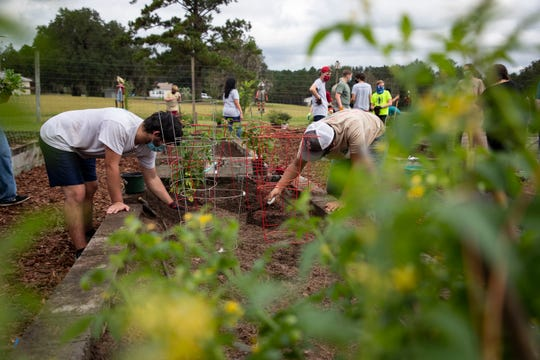 Volunteers plant vegetables as they help Alex Bos with his Eagle Scout project. Bos is refurbishing a garden at the Florida Baptist Children's Home.