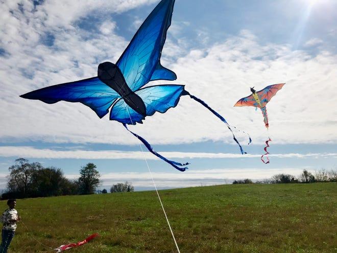 Kite Fest at Mill Ridge Park.
