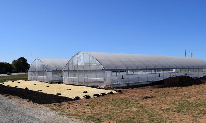 Amanda Belle's Farm is a collaborative venture between CoxHealth and Springfield Community Gardens.