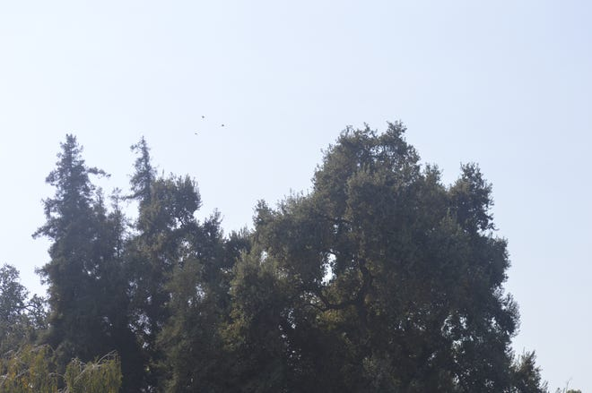 The San Joaquin Valley Air Pollution District reported moderate air quality in parts of Tulare County over the weekend but officials expect hazy skies to return later this week because of wildfire smoke.