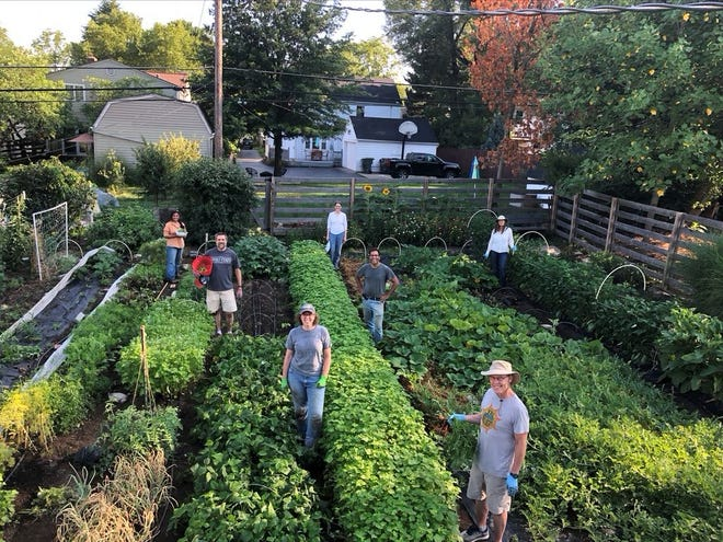 "BEST IN SHOW Winner: the Village Garden, Clintonville. Gardener's comments (Neeraj Tayal, manager and gardener): ""Our community garden ... is managed by five local families. ... (It) was started in 2017 and has helped us build a stronger community. This has helped all of our families eat healthier and learn the joy of growing food together. The garden is about 3,000 square feet and produces a bounty of high-quality, organic produce for us. We grow over 80 varieties of edibles. During this time of pandemic, it has been a blessing, giving us time outside and an ability to be together and easily keep a safe distance."" Judge's observations: ""When the 23 MGV (master gardener volunteer) judges were polled on their 'best of show' selection, we had a unanimous result on our first ballot,"" master gardener Carol McGlone said during the awards ceremony. ""I think that speaks to how special this garden is and the story behind it. . . .  ""The five families who participated are an example of the highest level of community spirit."""