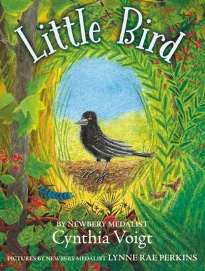 """Little Bird"" book by Cynthia Voigt"