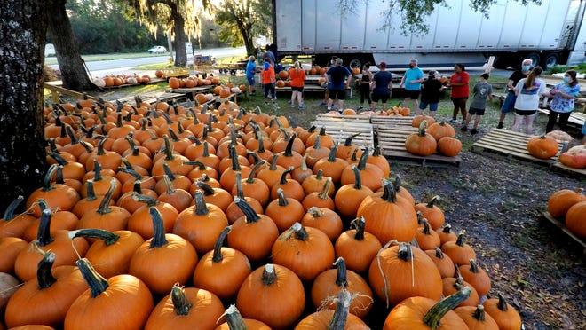 Pumpkin Patch Fort Walton Beach Halloween 2020 Mary Esther United Methodist Church holds annual pumpkin patch
