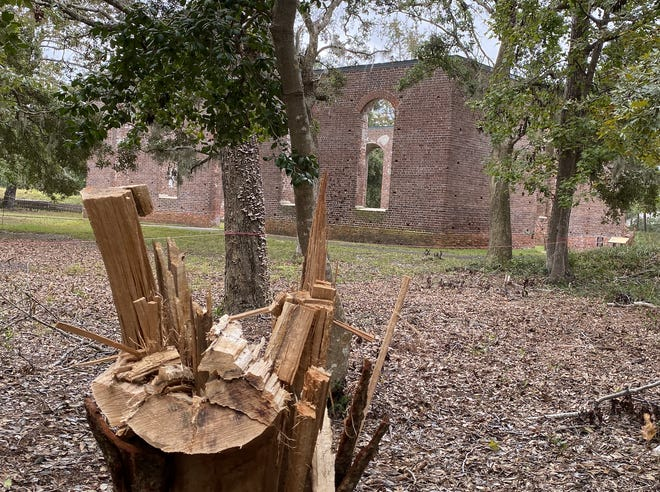 A fallen tree near St. Philip's Church is just some of the evidence a tornado touched down at Brunswick Town/Fort Anderson State Historic Site during Hurricane Isaias in August.