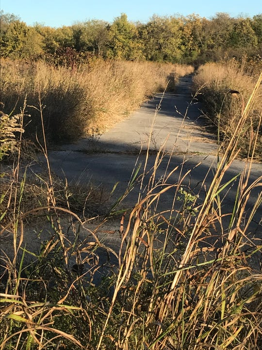 This is what the paved trail looks like from Farm Road 115, also known as Haseltine Road, near Haseltine Estate Wedding Venue.