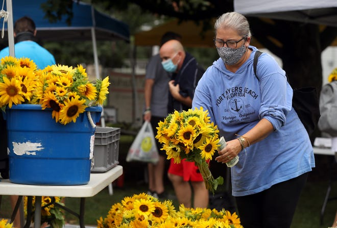 Jennifer Carruthers of Amanda browses through a selection of sunflowers at the farmers market Aug. 29. The idea for the Fall Festival came from the success of the farmers market, according to Karen Stiles, executive director of Destination: Canal Winchester.