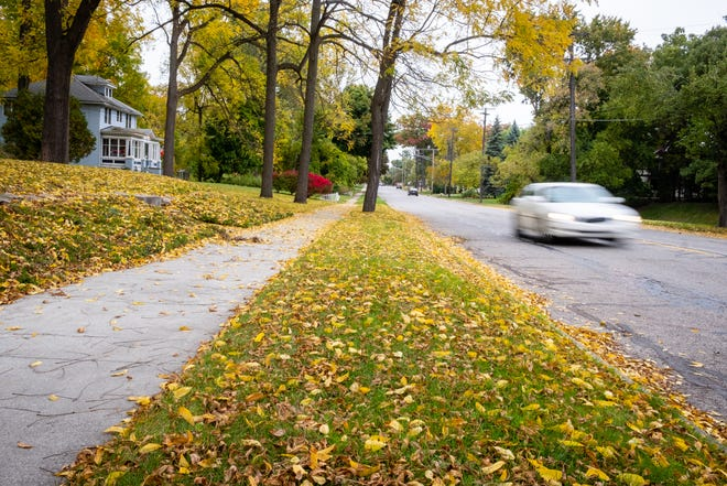 Port Huron is set to begin picking up leaves Oct. 19.
