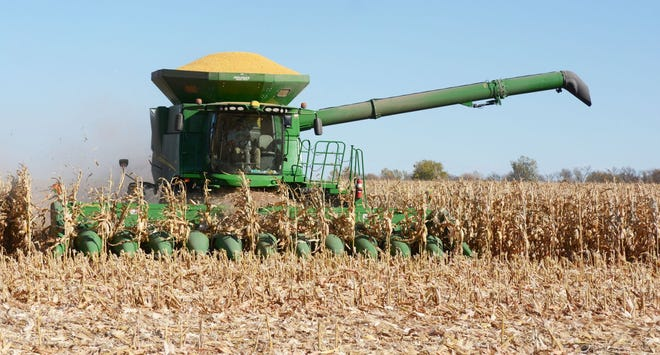 A combine finishes a round while combining rows of corn Monday near Watertown. Average yields are projected to be the highest they've ever been in South Dakota at 165 bushels per acre, according to U.S. Department of Agriculture estimates.