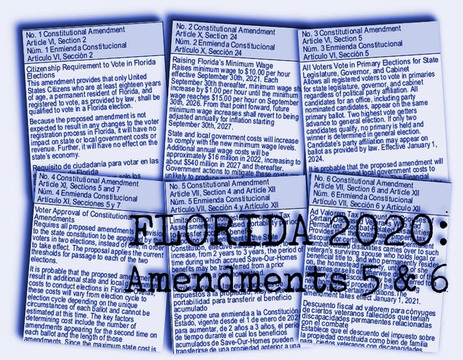 Florida's  Amendments 5 and 6 are proposed property tax breaks.