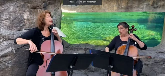 "Cellists Adrienne Welsh and Vicki Strauss perform Handel's ""Variations on Water Music Themes"" in front of the Oregon Coast Aquarium's otter exhibit."