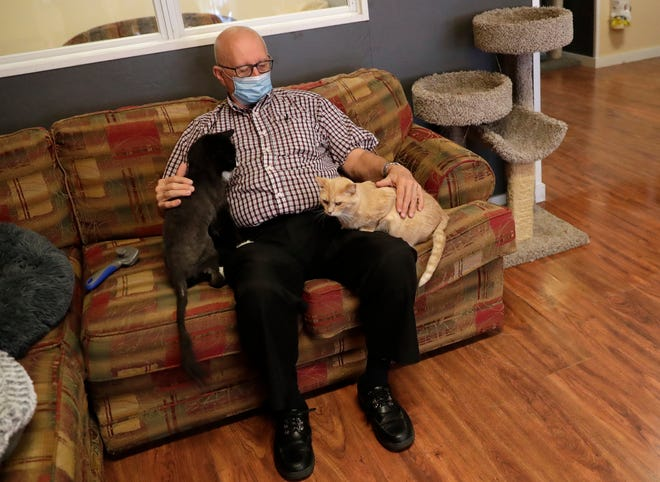 "Volunteer Terry Lauerman, better known as ""Cat Grandpa"" or ""Cat Grandpa Terry,"" gets in a little cuddle time with a couple of adult cats at Safe Haven Pet Sanctuary in downtown Green Bay's Broadway District."