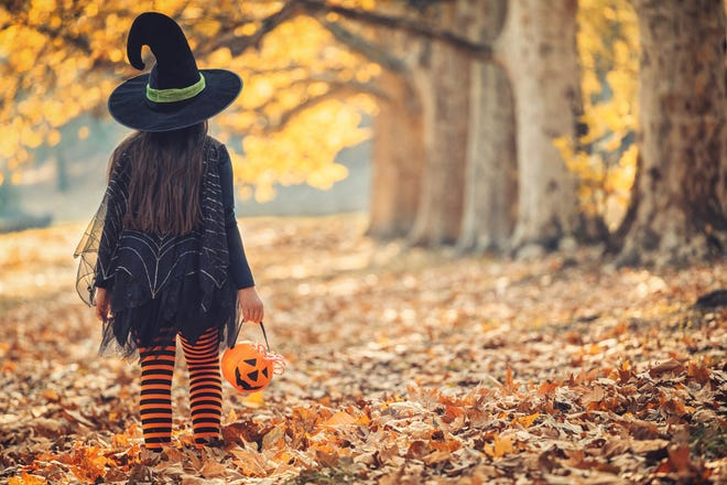 If you can't trick-or-treat this year, treat the young ones to a Halloween tale