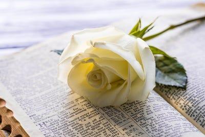 Obituaries in Holden, MA | The Landmark