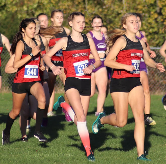 Honesdale's girls varsity cross country team moved one step closer to a Lackawanna League division title on Wednesday with a big win over archrival Paupack. Brenna Dahlgren, Rachael Collins and Mia Hall went 1-2-3 to ensure a Lady Hornet victory.