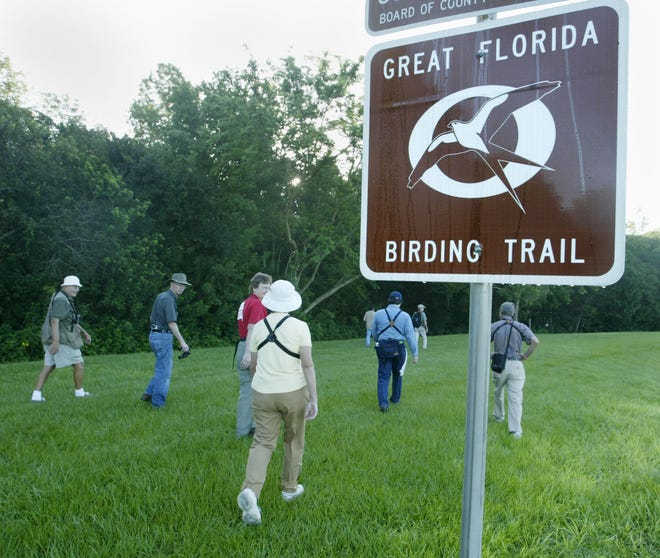 Bird watchers start their walk through the nature trail at Saddle Creek Park in Lakeland in 2003. Numbers of migrating songbirds have dropped dramatically in a few decades.