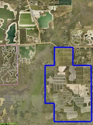 Outline of property off Corkscrew Road in southeast Lee County owned by FFD Land Co. Inc., a company controlled by the Lipman family, the country's largest tomato grower. A settlement to a lawsuit means instead of limerock mining, the property will be developed for housing.