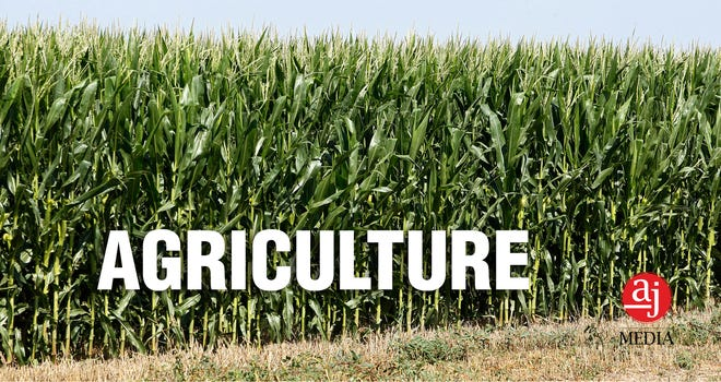 Lubbock-area Agriculture news