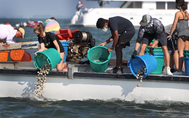 From left, Alyssa Warren, Arique Heemal and Ryan Christine seed the Sarasota Bay with clams during a Sarasota Bay Watch restoration event held last October. The restoration project is just one of many community initiatives that have been funded by the Charles & Margery Barancik Foundation.