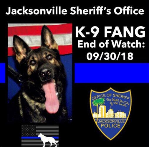 Jacksonville Sheriff's Office police dog, Fang, shot and killed in the line of duty in 2018 while pursuing an armed carjacking suspect.