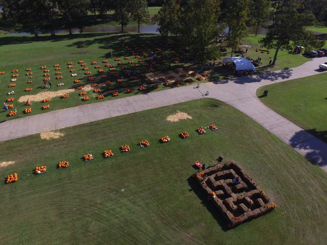 The NewSong Community Church pumpkin patch, at the corner of Old Perkins and Bluff Road in Prairieville, will be open throughout October.