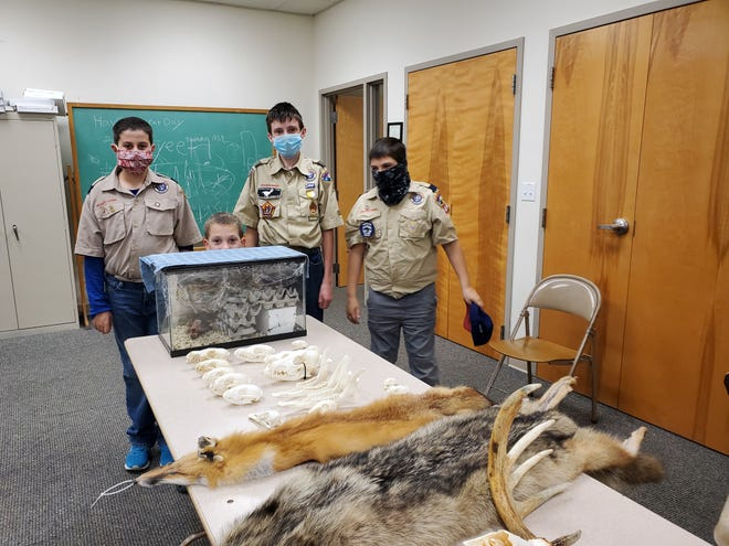 Some of the Scouts in attendance for a lesson in taxidermy were Aidan Green, Joshua Morse, Conor Clancy, and Gavin Bicksler.