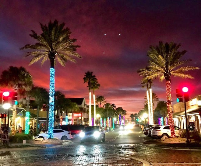 """With the cancellation of several fundraisers due to COVID-19, the Beaches Town Center has launched """"Light the Night,"""" a campaign to support its annual holiday display of sparkling, light-wrapped palm trees."""