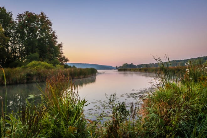 Wetlands at the Finger Lakes Museum in Branchport near Keuka Lake are seen in this photo by Helen Heizyk.