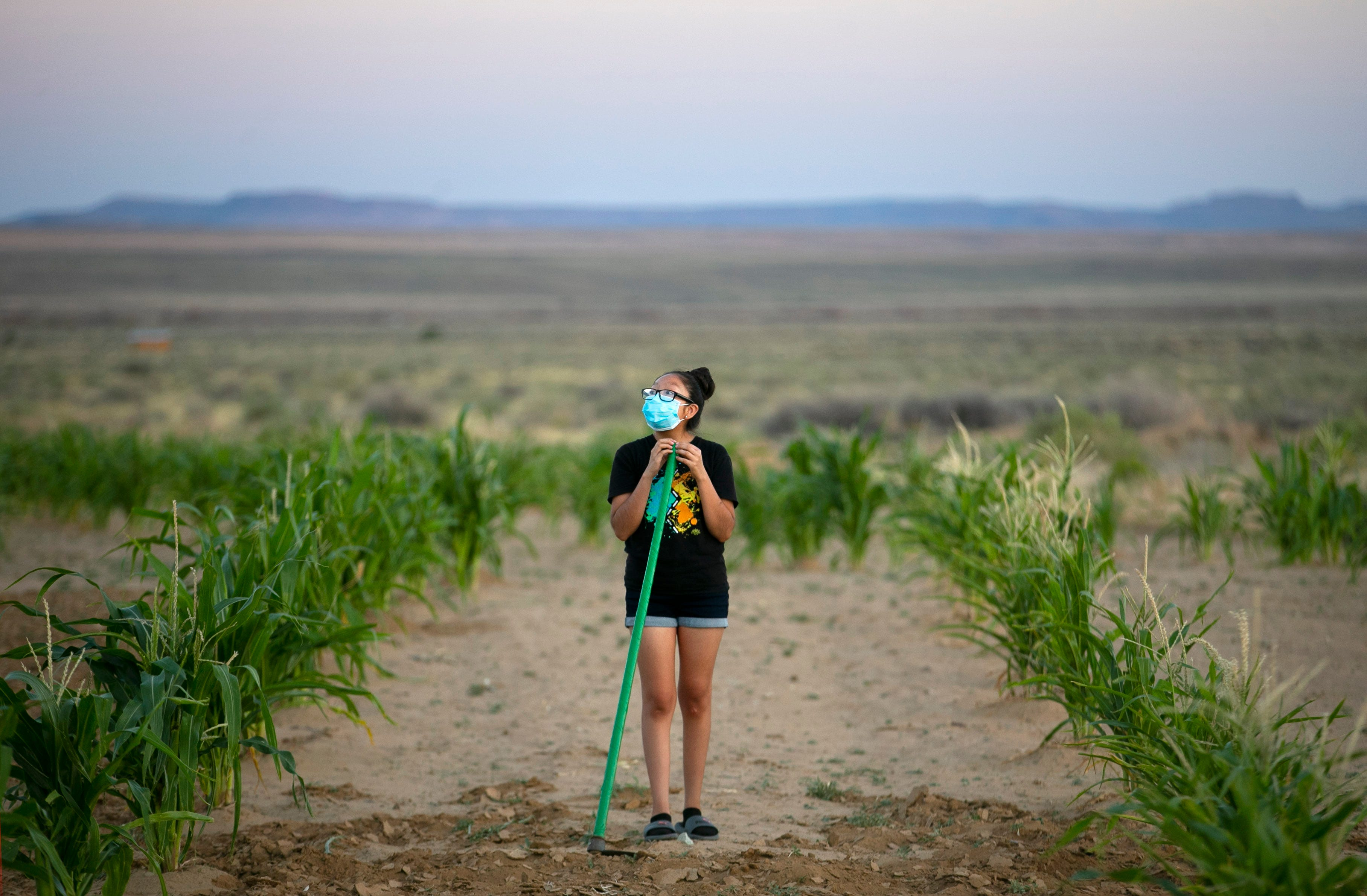 Recca Lomawaima, 15, pauses while working in the field at her family's home below Second Mesa on the Hopi Reservation on July 30, 2020.