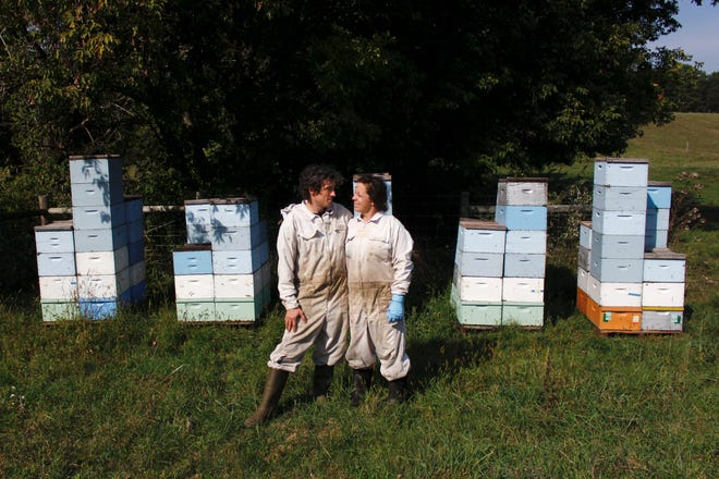 Beekeepers James Cook and Samantha Jones pose for a portrait in front of some of their hives at one of their bee yards near Iola, Wis., on Wednesday, Sept. 23, 2020. The couple has worked with honey bees for several years but started their own business this year and proceeded with plans even after the coronavirus pandemic hit.
