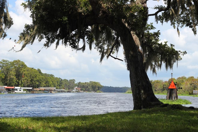 Lake Beresford — located just west of DeLand — runs into the St. Johns River and continually has runoff stormwater dumped into it.