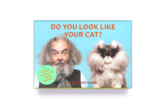 Do You Look Like Your Cat? is  a card memory game that matches cat cards with human cards.