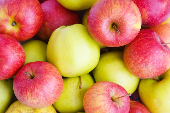 Apples are just one of the treats available during the fall. Pumpkins, squash, beets, pears and parsnips are also ready to harvest and enjoy.