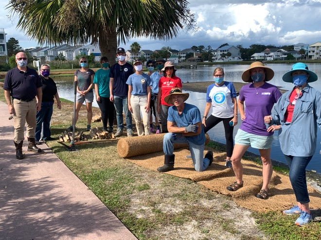 Volunteers work together to install the coir - natural eroison control fabric on the south shore of Carolina Beach Lake.