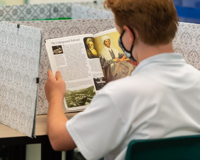 A student reads a history book.