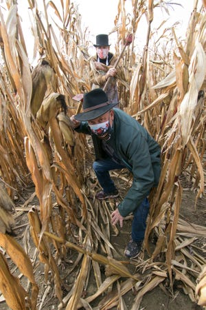 Ken Evans, in the foreground, and Rick VanGilder, shown Wednesday, Oct. 21, 2020, have worked some fun into the cornfields of VanGilder Farms near Fowlerville with their annual corn maze at Slaughterhouse Adventure & Grand River Corn Maze.