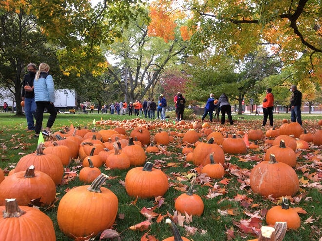 More than 70 conscientious volunteers formed a pumpkin brigade to move the 1,000 pumpkins 200 feet from the large truck to the Pumpkin Patch at the Methodist Church on Maple Road.